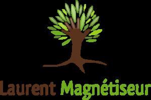 Laurent Dhayer, magnétiseur à Orléans dans le Loiret, vous propose des séances de magnétisme et de reiki afin de vous soulager naturellement.