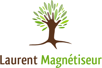 Laurent Dhayer - Magnétiseur à Orléans dans le Loiret (45), vous propose des séances de magnétisme et de reiki.